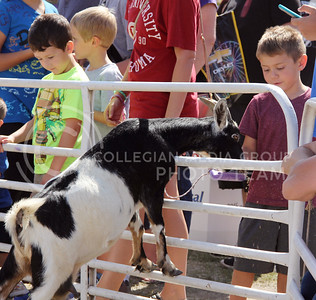 5 year old BJ Wagner from Russell, KS feeds pellets to an eager goat at the Kansas State Fair in Hutchinson on Saturday. (Vail Moshiri | The Collegian)