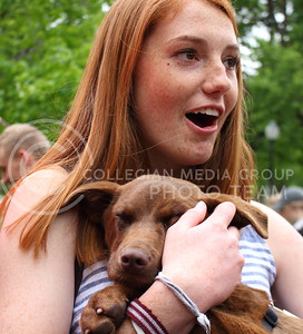 Jordan Kiehl, freshman in industrial engineering, holds a puppy at the Delta Sigma and Gamma Phi Beta fifth annual Delta Sig Dogs event at the Delta Sigma house on May 1, 2016. (Miranda Snyder | The Collegian)