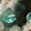 Rosasite & aurichalcite on smithsonite. Collected at the Silver Hill mine. FOV about 8mm.