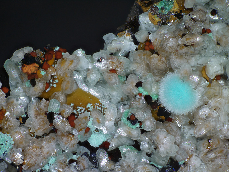 Smithsonite and aurichalcite on goethite from Silver Hill mine. FOV about 8mm.