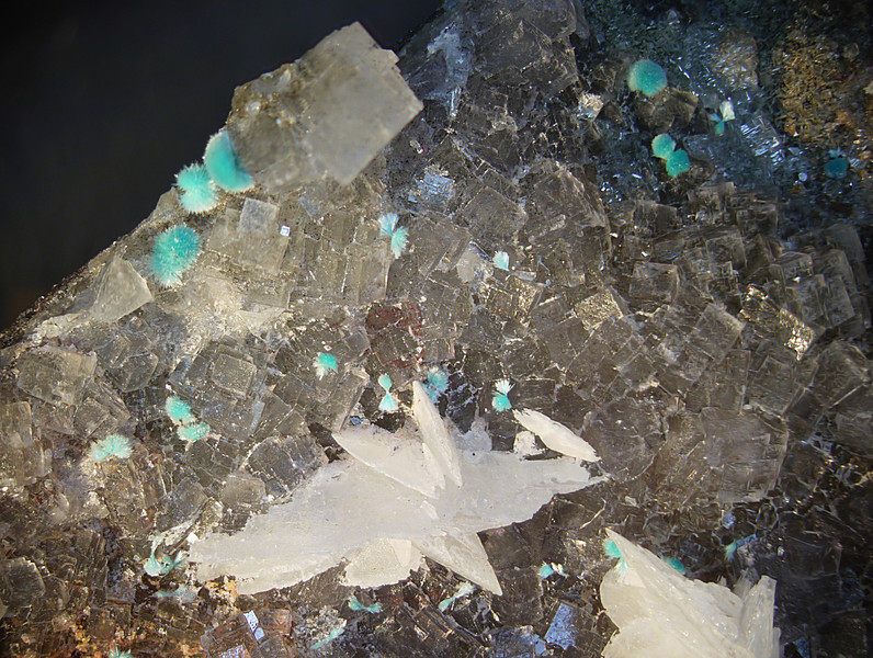 Aurichalcite and calcite blades on fluorite, also some cerussite at the top, barely visible. McCracken mine.