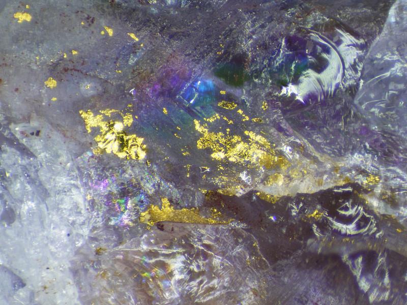 Gold in amethystine quartz from the Collins cut, (Tiger) Mammoth, AZ. (Thanks Bill Yedowitz) FOV 2mm.