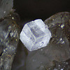 Unknown zeolite from near Malpais Hill, crystal about 0.2mm