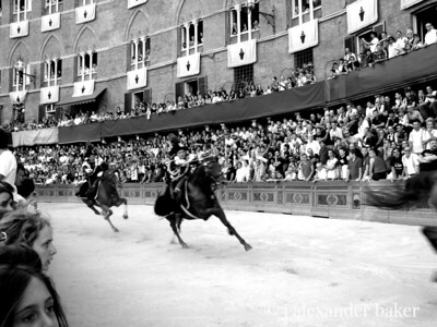 Charge of Caribinieri, provo of the Palio, Siena, Italy 2007