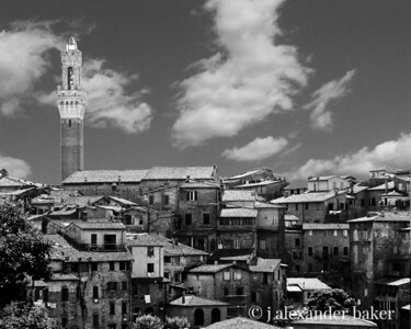 A View of Siena