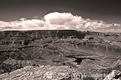 As the crow flies - Grand Canyon National Park, Arizona