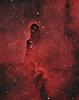 IC1396 elephant trunk nebula in HOO