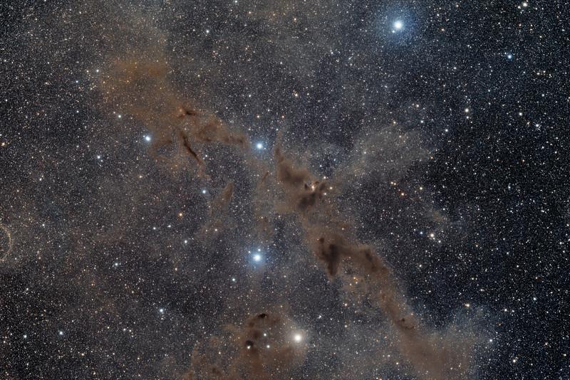 Dark Wolf Nebula