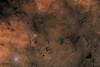LDN66 Snake Nebula