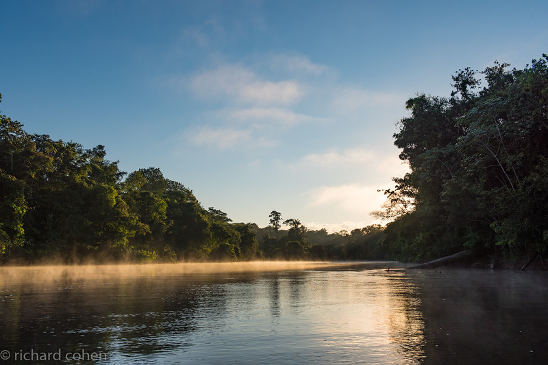 Late day mist rising from the river...where are those Jaguars?