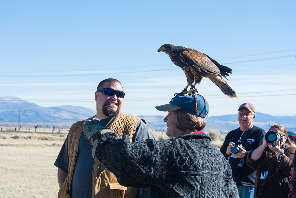 We had a short falconry exhibition at one of the ranches. Well trained hawk!