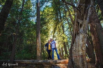 Brad_Amanda_Engagement_021