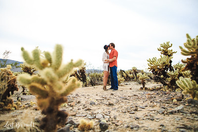 Chris+Stephanie_Engagement_020
