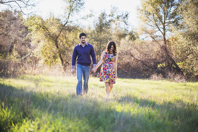 20130216 Josh   Carolyn Engagement  013