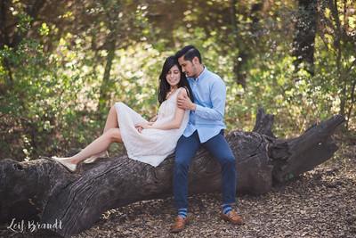 012_L&S_Engagement