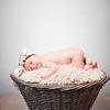 collins-newborn-0003