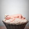 collins-newborn-0001