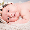 collins-newborn-0012