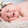 collins-newborn-0010