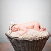 collins-newborn-0002