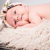 collins-newborn-0008
