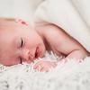 flynn-newborn-001