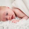 flynn-newborn-002