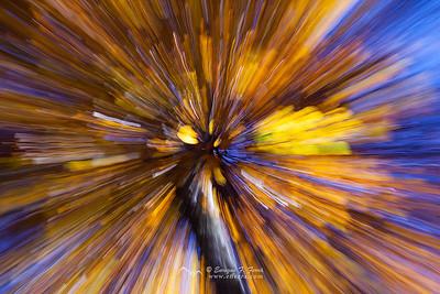 Autumn ray burst 2, P. Nt. Sierra Cebollera, La Rioja