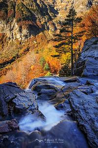 Contrastes otoñales, Valle de Pineta, Huesca