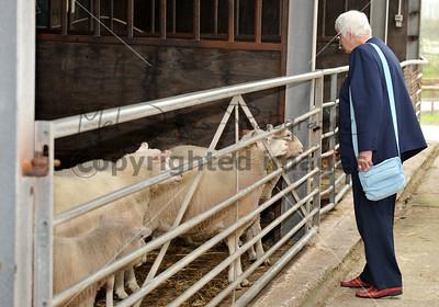 0017_Wyred UP Farmer Parrs 25 Sep 2013