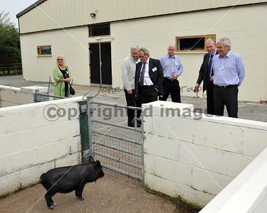 0013_Wyred UP Farmer Parrs 25 Sep 2013