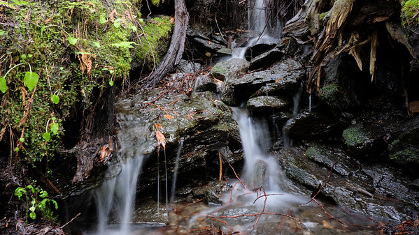 Small waterfalls everywhere