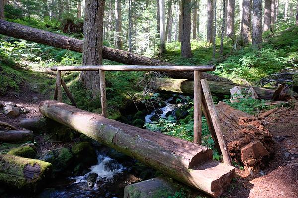 Bridge over Tunnel Creek