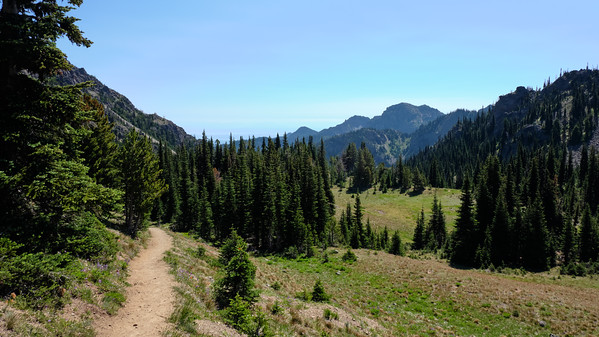 Trail leading down to the meadow