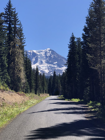 Mt Adams near the intersection of FR 23 and FR 2329