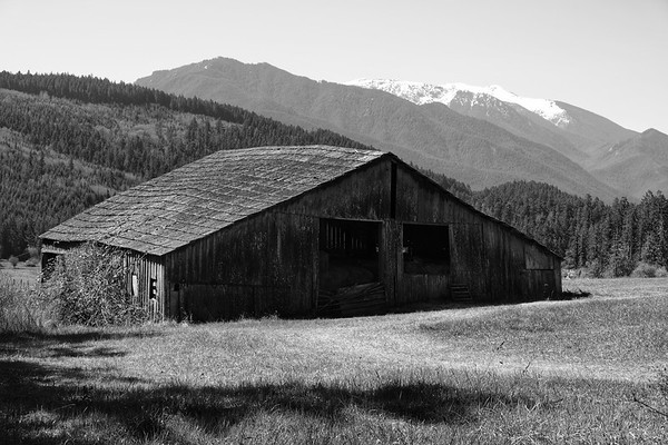 An old barn with the Olympic Mountains the background