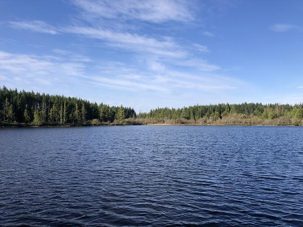 Teal Lake Road