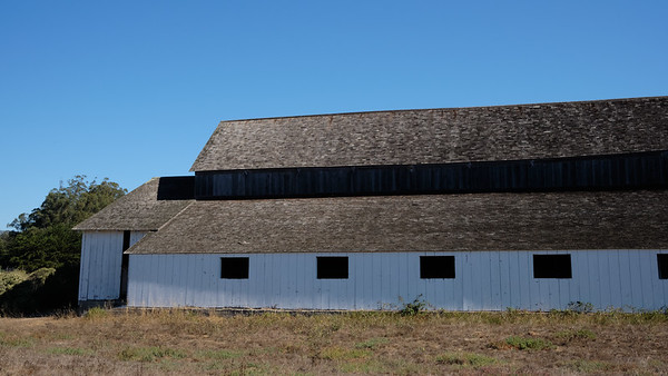 Old barn at Tomales Bay State Park