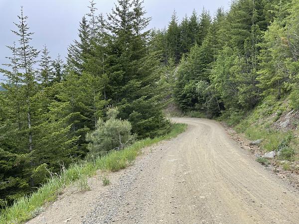 Fast descending Tillicum USFS 5800 Road