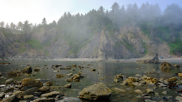 Fog over the incoming tide