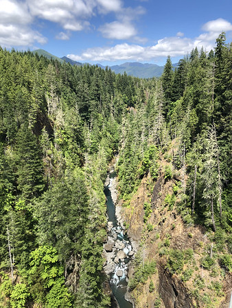 View into the canyon created by the South Fork of the Skokomish from the High Steel Bridge