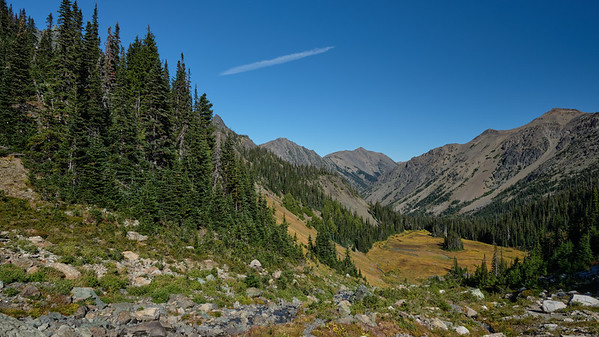Looking down into the upper meadow