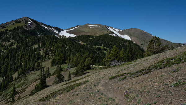 Traveling along the ridge towards Baldy shortly before connecting to the Maynard Burn trail