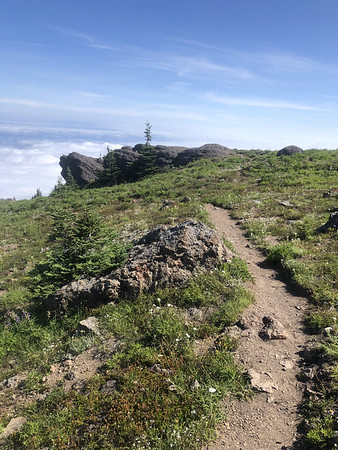 Trail above the clouds