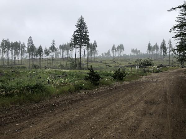 Goat Ranch Road