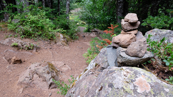 Cairn marking the trail through the rabbit warren