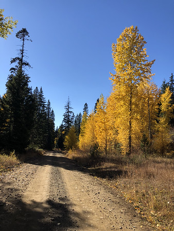 Some great looking gravel roads for future exploration!