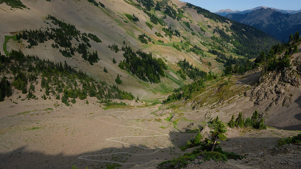 Perfect switchbacks heading to Obstruction Point