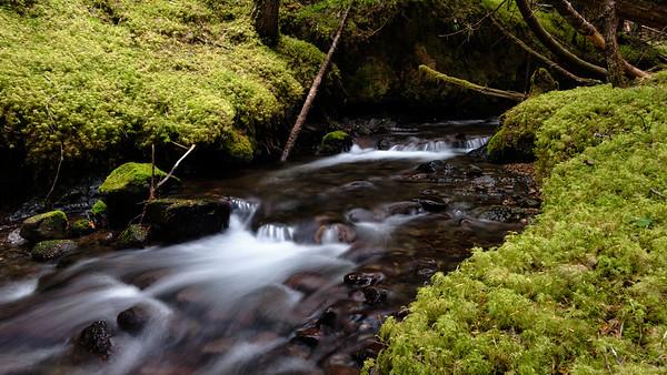 Small stream falls
