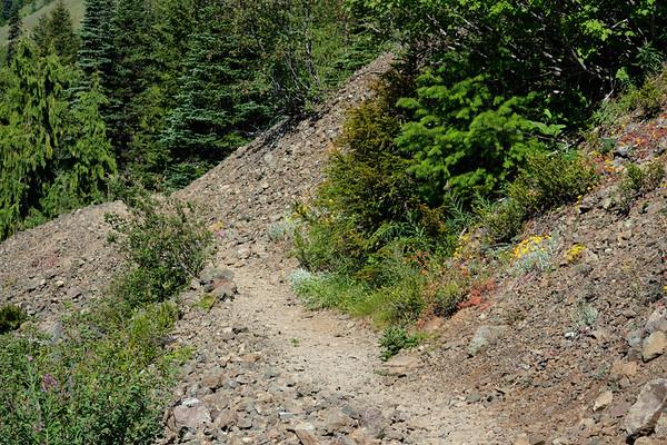 Trail through a scree field